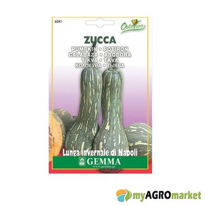 Κολοκύθα πράσινα μακρια σπόρος sporos kolokutha prasini